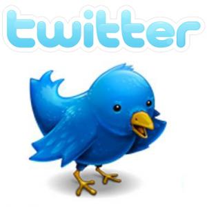 Twitter Advertising In Brief