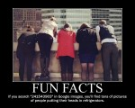 Fun-facts-25