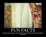 Fun-Facts-26