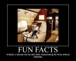 Fun-Facts-8