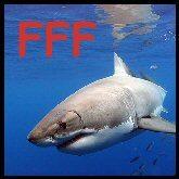 fff-shark